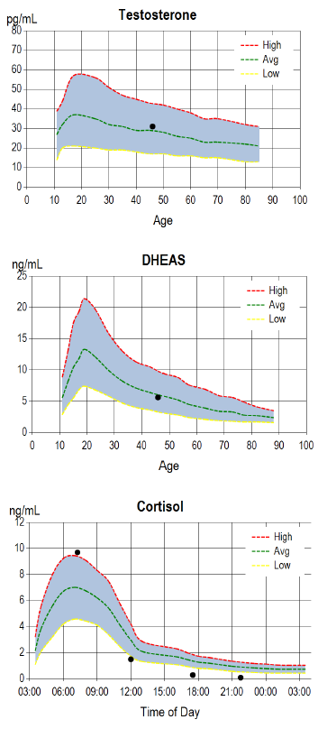 Testosterone, DHEAS, and Cortisol graphs