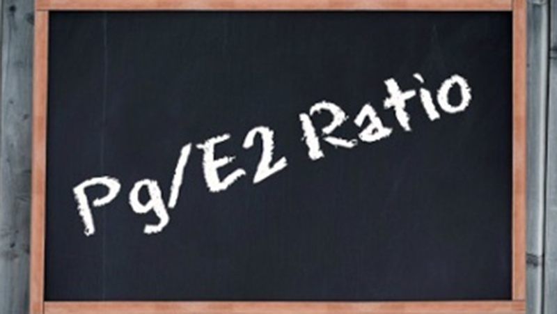 "Chalkboard with ""Pg/E2 Ratio"" written out"