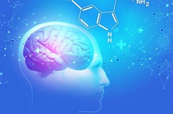 The Impact of Hormones on Serotonin in Depression