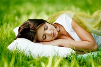 Herbal Remedies for Sleep Disturbances & the Nervous System